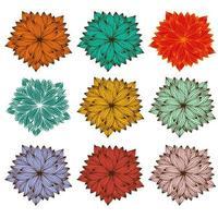mandala zentangle impostato per libro da colorare vettore