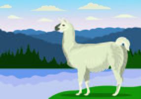 Illustrazione vettoriale del lama