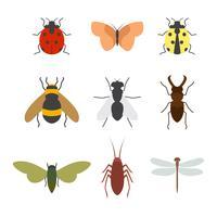 Collezione di insetti vettoriali