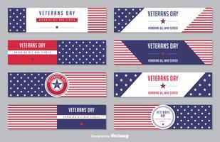 Insieme di bandiera di vettore di stelle e strisce di giorno di veterani