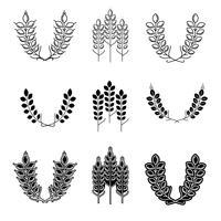 Simboli di orecchie di grano per disegni di logo vettore