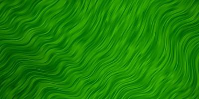 sfondo verde chiaro con linee.