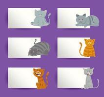 gatti con carte insieme di elementi di design del fumetto
