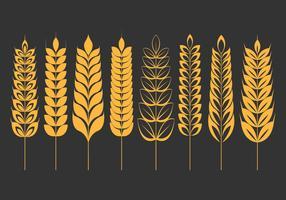 Set di icone di orecchie di grano vettore