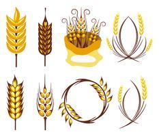 Vettore libero di simbolo di agricoltura delle orecchie del grano