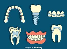 Vettore dell'elemento dentale