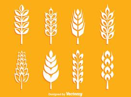 Vettore della raccolta delle orecchie del grano bianco