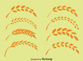 Orecchie di grano sul vettore verde