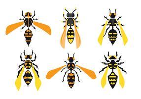 Set di calabroni giganti isolato su sfondo bianco