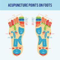 Vettore di schema del piede di agopuntura