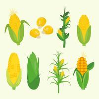 Corn Plant Vector gratuito