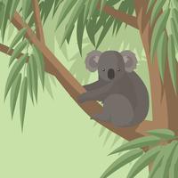 Koala nel vettore libero dell'albero di gomma