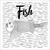 Illustrazione di pesce di vettore disegnato a mano libera