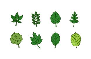 Set di icone di foglie vettore
