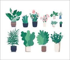 set di oggetti di diverse piante d'appartamento vettore
