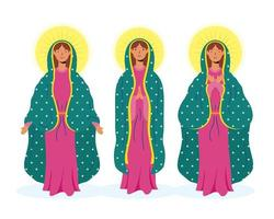 set di icone di vergine maria vettore
