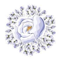 germogli intorno alla pittura del fiore della rosa blu