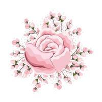 boccioli intorno alla pittura di fiori di rosa rosa