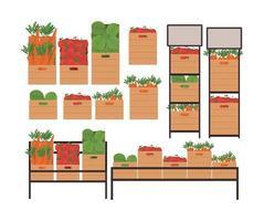 pomodori, lattughe e carote all'interno di scatole e scaffali