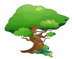 albero della vegetazione della giungla vettore