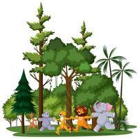 animale selvatico o gruppo di animali da zoo con elementi della natura su sfondo bianco vettore
