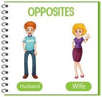 parole opposte con marito e moglie vettore