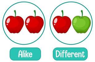 parole opposte con uguale e diverso
