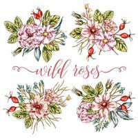 collezione di mazzi di rose selvatiche vettore