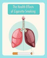 poster sugli effetti sulla salute del fumo di sigaretta vettore