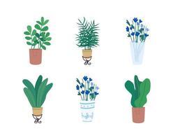 set di oggetti vettoriali piatto homeplants