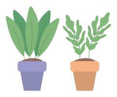 piante isolate all'interno di pentole disegno vettoriale