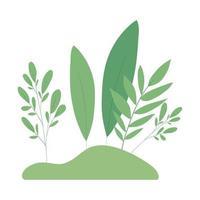 disegno vettoriale di foglie verdi isolato