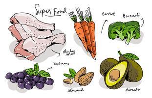Illustrazione disegnata a mano di vettore degli alimenti eccellenti