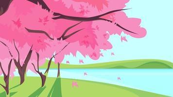 Sakura in fiore sulla riva del fiume.