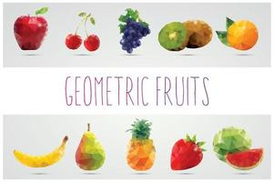 raccolta di frutti poligonali geometrici vettore