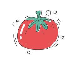 cibo sano nutrizione dieta raccolto biologico icona vegetale pomodoro crudo vettore