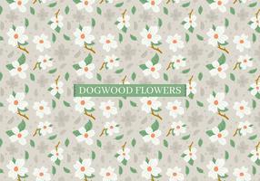 Sfondo di fiori di corniolo