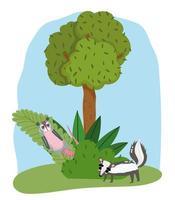 simpatici animali opossum e puzzola erba albero natura cartone animato selvaggio