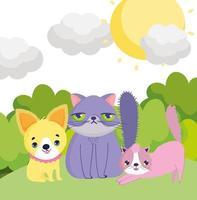 piccolo cucciolo e gatti sole cielo fuori animali domestici vettore