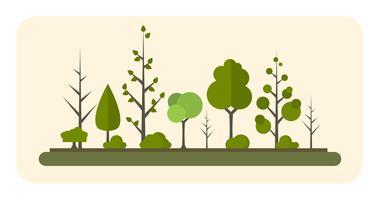 Collezione di alberi diversi vettore