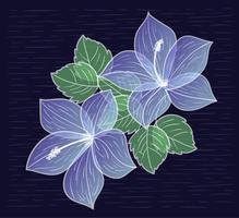Illustrazione di fiori disegnati a mano di vettore