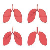 polmoni illustrazione vettoriale design isolato su sfondo bianco