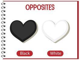 parole opposte con bianco e nero vettore
