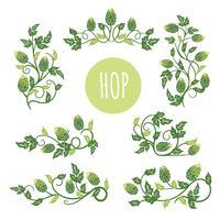 Pianta verde del luppolo, illustrazione di vettore di stile di schizzo isolata su fondo bianco. Coni di luppolo verde maturo, ingrediente di birra