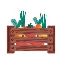 pomodori, carote e cipolle all'interno della scatola dettaglio stile icona disegno vettoriale
