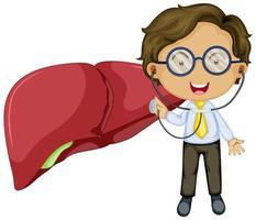 fegato con un personaggio dei cartoni animati medico vettore