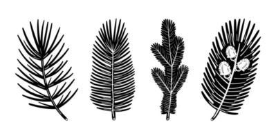 set di elementi di albero di pino ramo di abete rosso. disegno monocromatico della pianta di natale. vettore