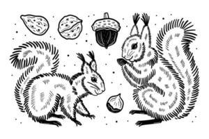 insieme di elementi della foresta. scoiattoli semi di noci di ghianda. disegno vettoriale di inchiostro nero.