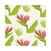 Heliconias piante tropicali pattern di sfondo vettore