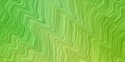 layout vettoriale verde chiaro con linee ironiche.